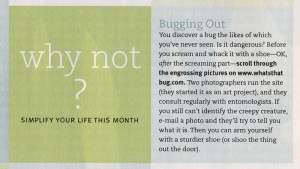 Real Simple Magazine, August 2006