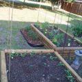 butterfly_garden_margo