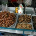 insect_fastfood_thailand