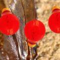 red_light_bulbs_esp