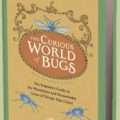 the_curious_world_of_bugs