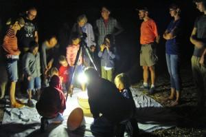 Crowd Gathers around a Mercury Vapor Lamp