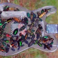 Guitar embellished with real beetles