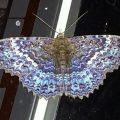 Possibly Geometer Moth