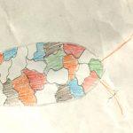 Bug Drawing